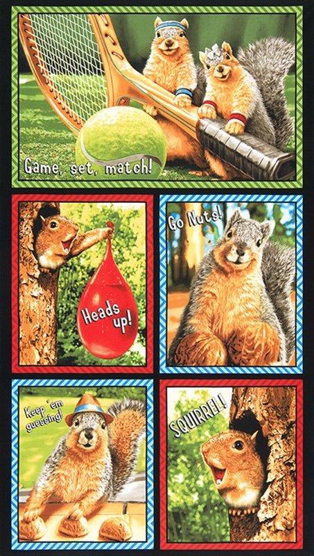 Squirrel-Bright 12-195
