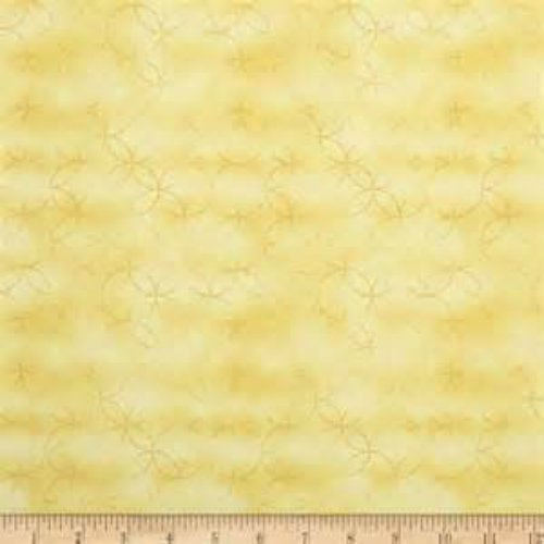 Sunflower Bou-Maize 34-S