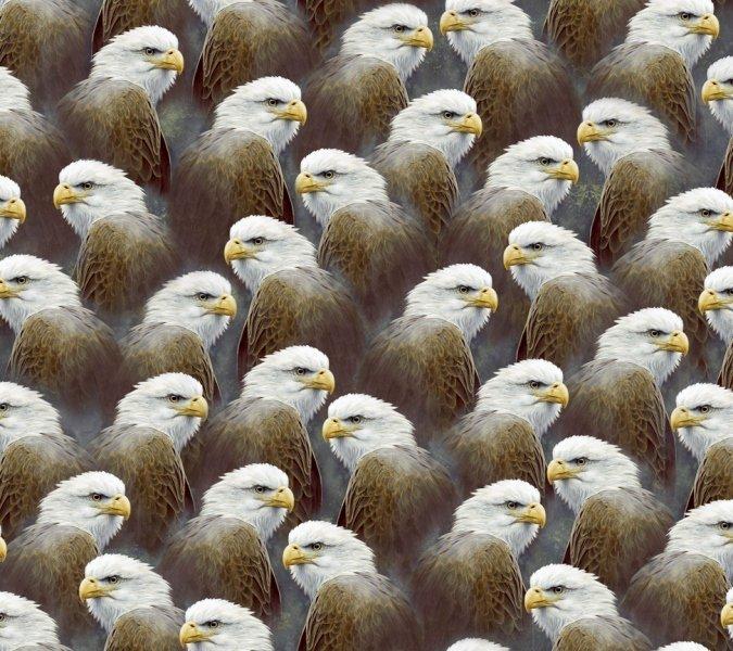 Majestic Eagle-Grey 24-K