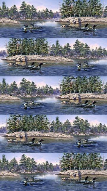 Loon Lake-48-44