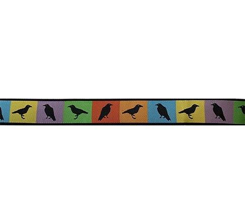 Ribbon-Summer Ravens 7/8 Wide