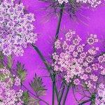 Botanica Blooms-38-55