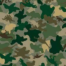 Find the Dinosaurs Camo