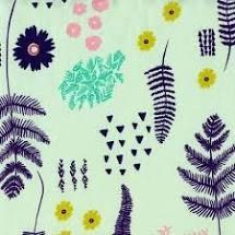 Mesa Ferns
