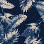 Bird of Paradise Canvas