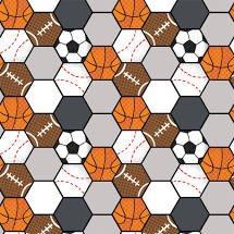 Sports Balls Hexagon