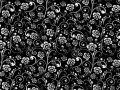 45 Black & White 49112