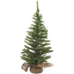 Mini Canadian Pine W/Burlap Base X148 24
