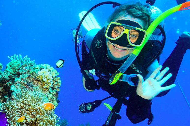 LET'S GO DIVING~BOOK YOUR DIVE!