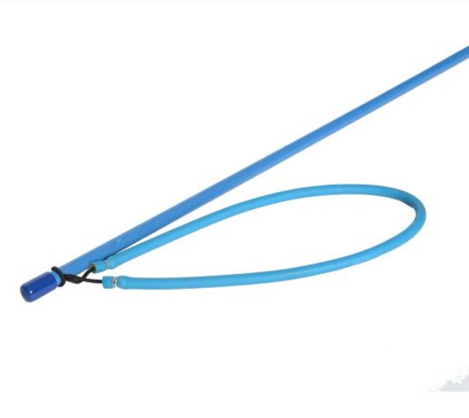 Blue Lionfish Pole Spear
