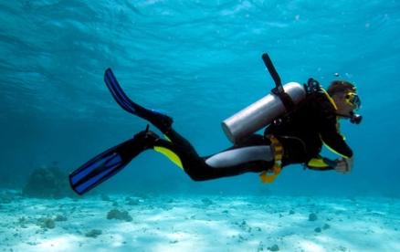 Private Dive Master Guide