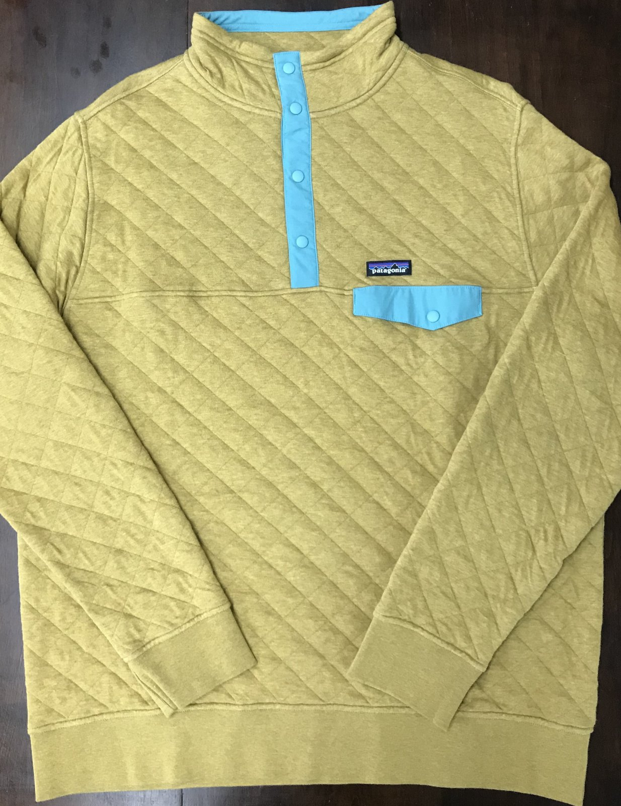 Patagonia Cotton Quilt Snap-T