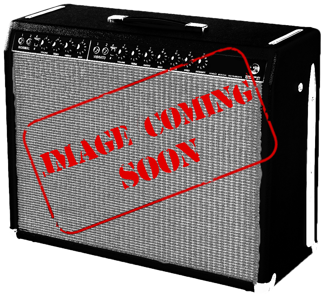 Mesa Boogie Powerhouse 2x15 Bass Cab