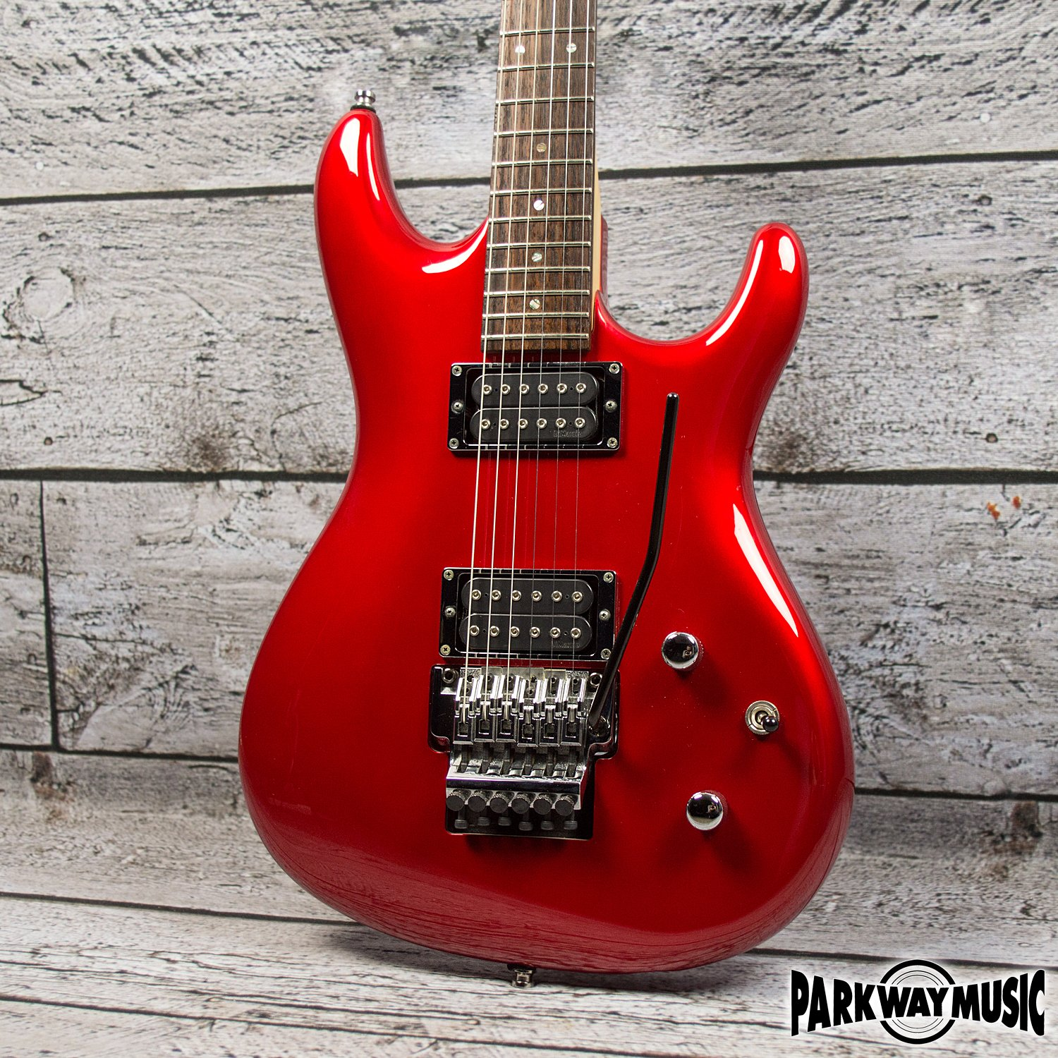 Ibanez JS1200 (USED)