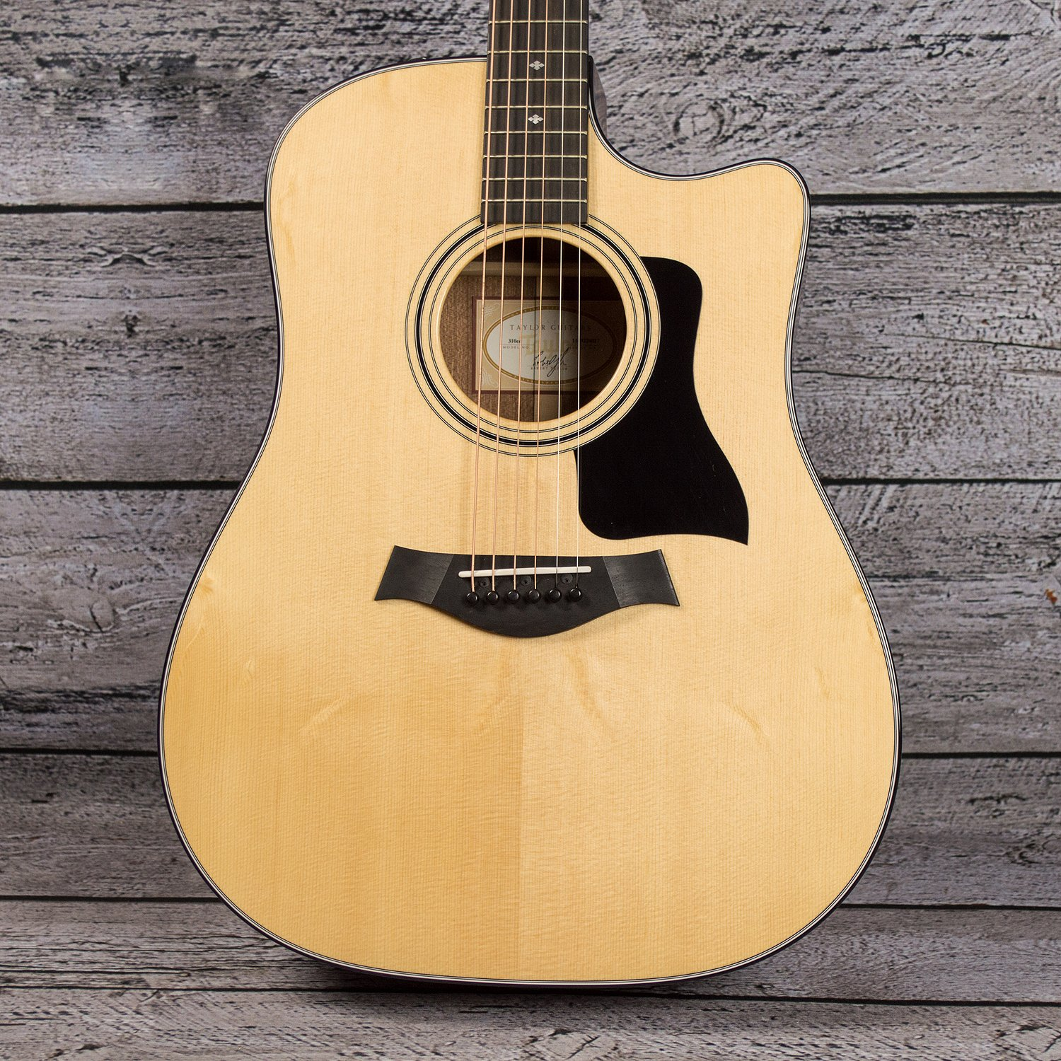 Taylor 310ce (USED)