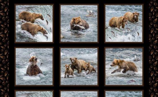 Fishing Bears 24 Panel