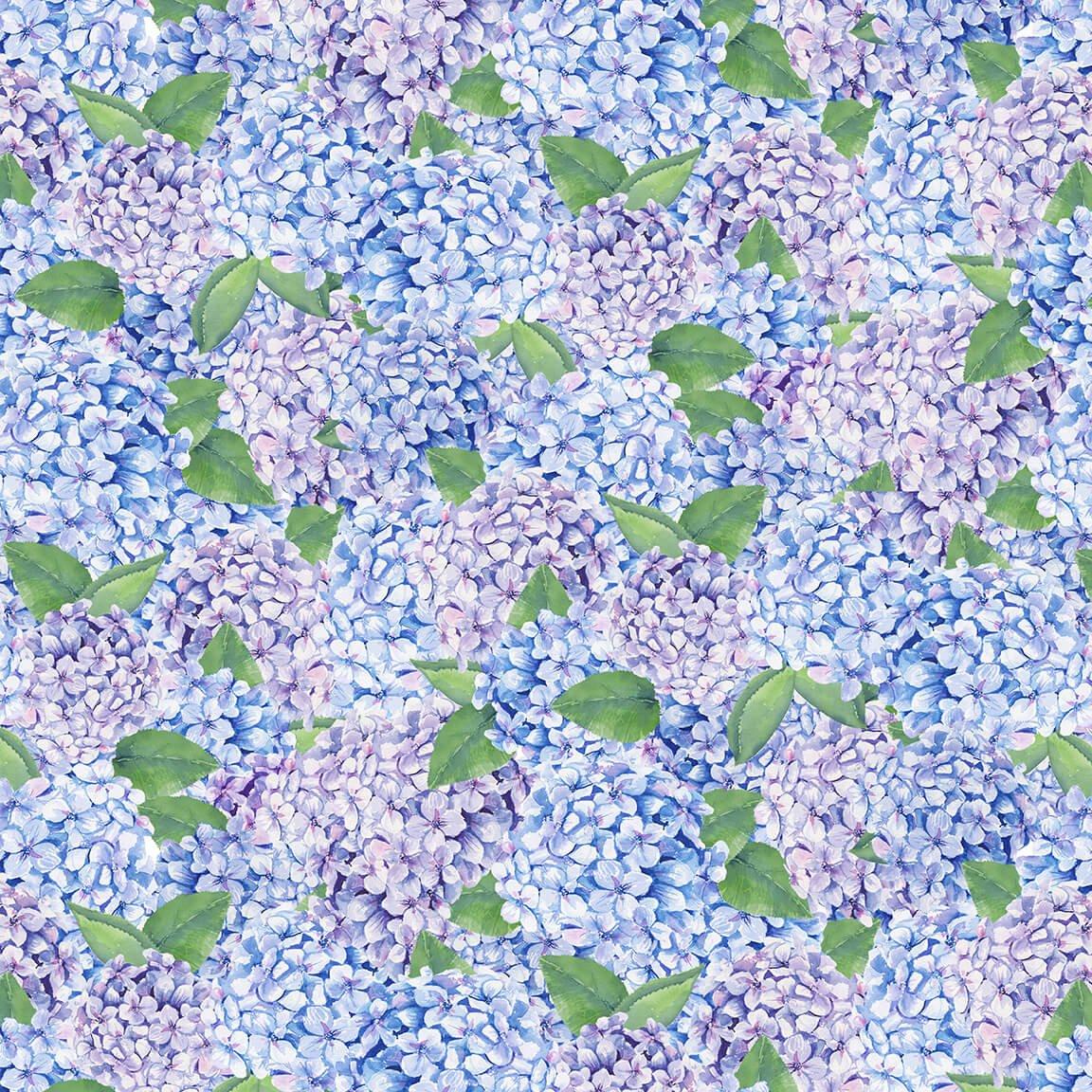 Coastal Paradise Lilacs