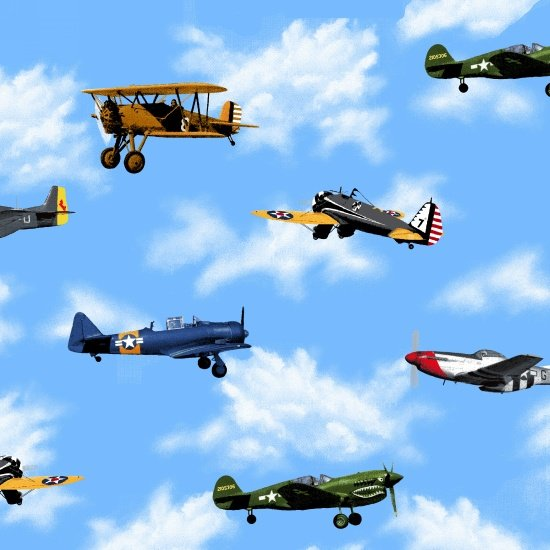 Air Show Vintage Planes