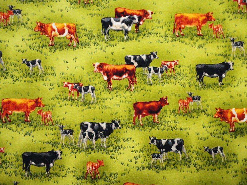 Farm Fresh Cows  AKO 11415-47
