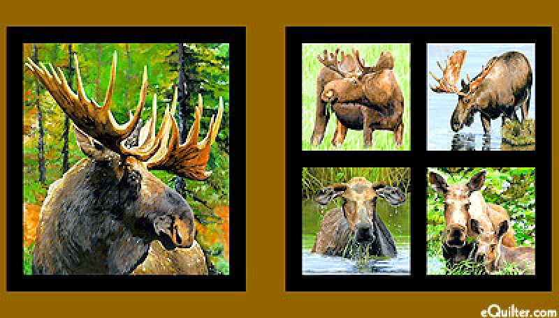Moose Country  Panel  3878-60414-0