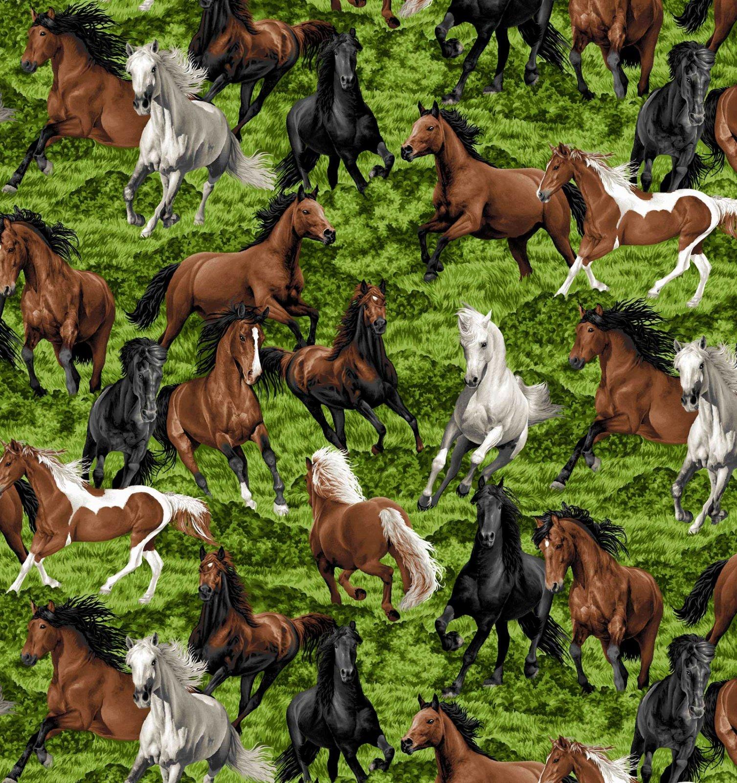 Horse Play Allover
