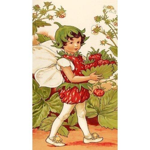 Strawberry Farie Panel