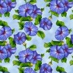 Prairie Gate Flowers