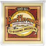 Earthwood 12 String Light Acoustic