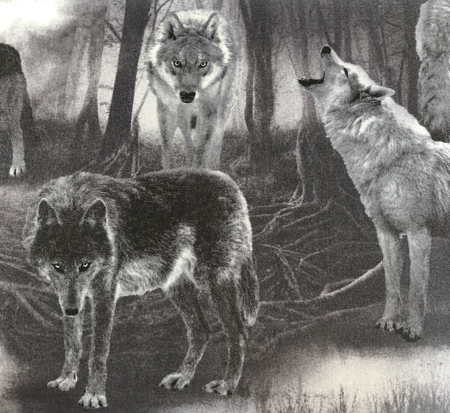 Wicked - Black Wolves