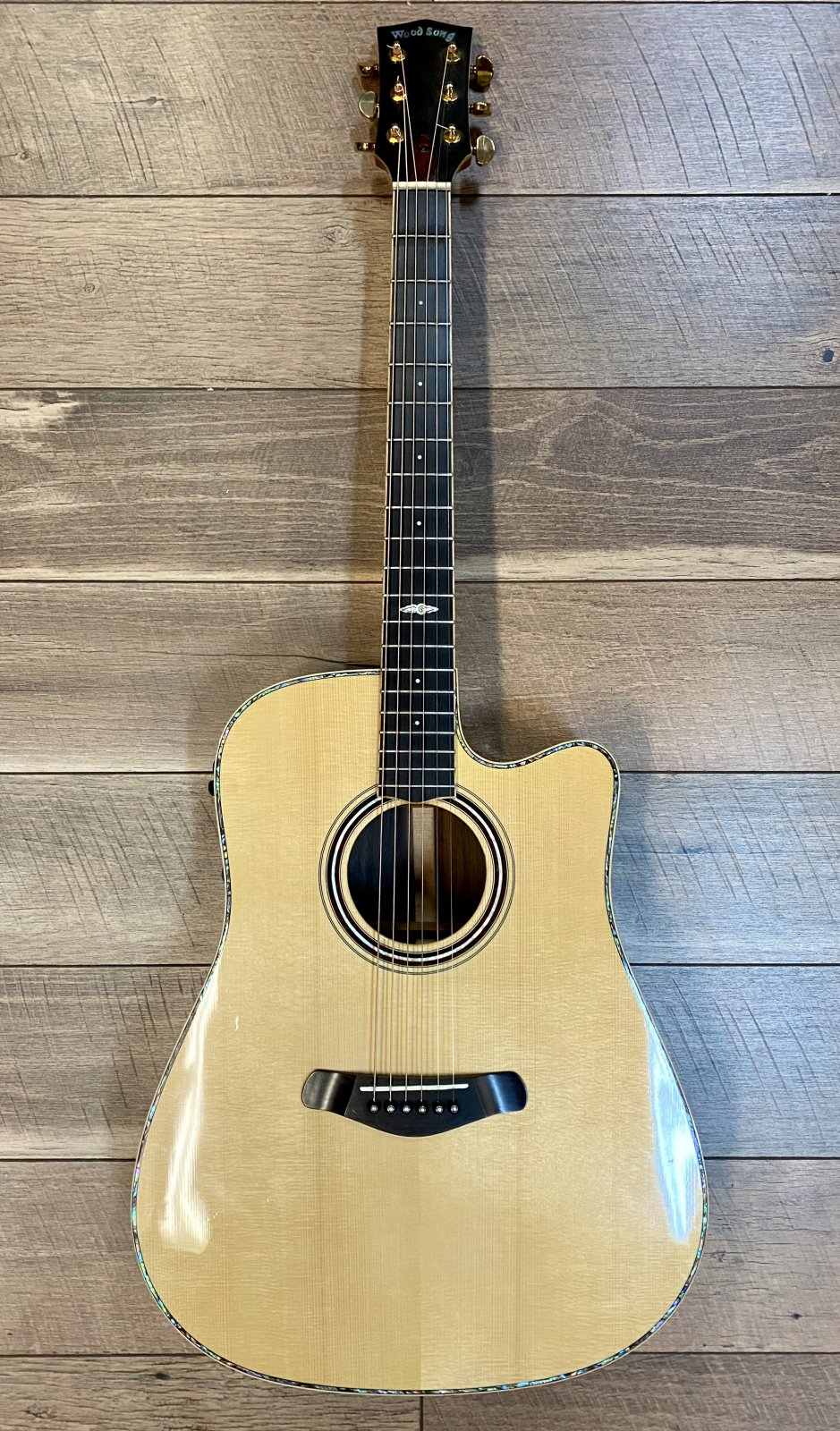USED - Wood Song DCE-NA Acoustic Guitar w/Case