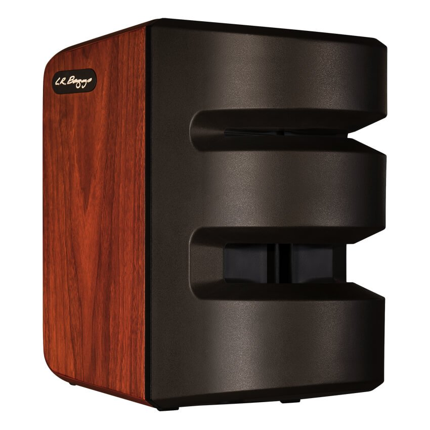 LR Baggs Synapse 2 Channel Personal PA System Featuring All-Horn Technology
