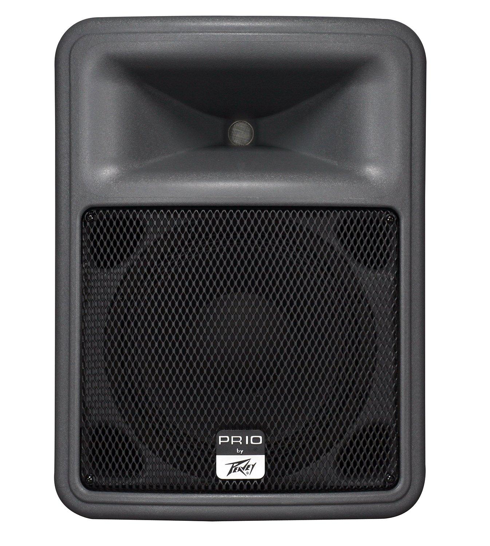 Peavey PR10 Speaker