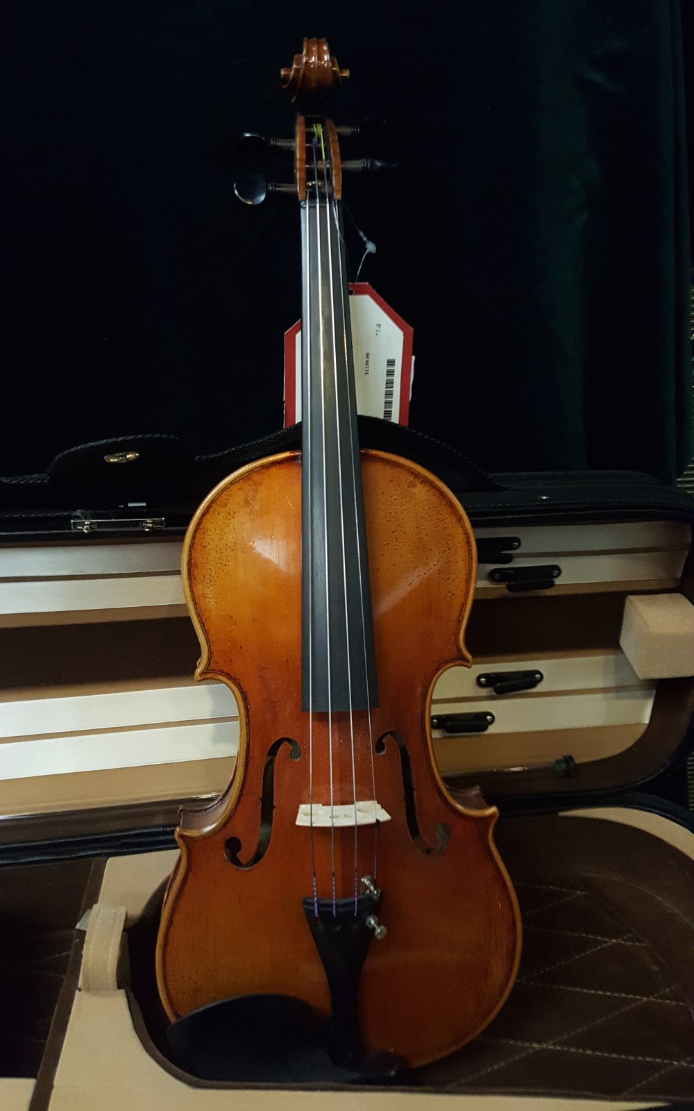 Sound of Music Lord Wilton 4/4 Violin Outfit