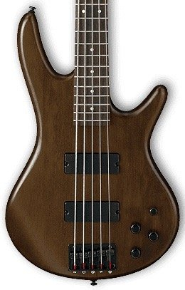 Ibanez GSR205BWNF 5-string Electric Bass - Walnut Flat
