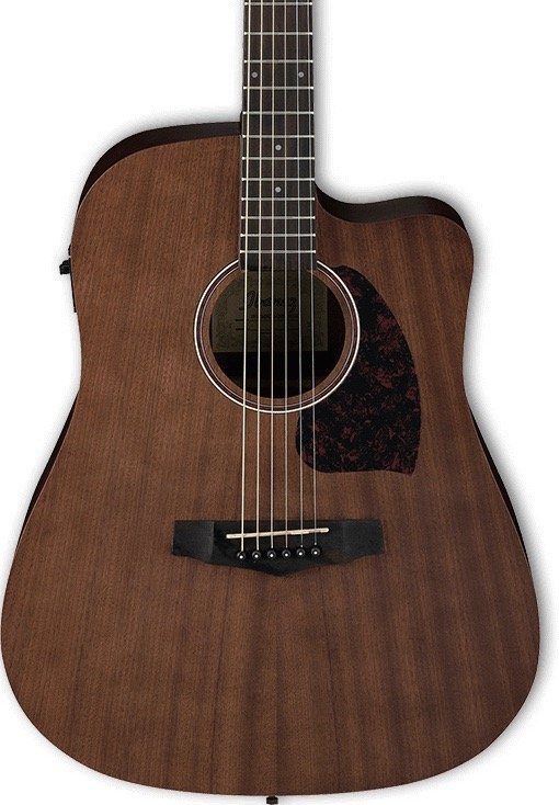 Ibanez Performance Dreadnought Acoustic Electric Guitar - Open Pore Natural