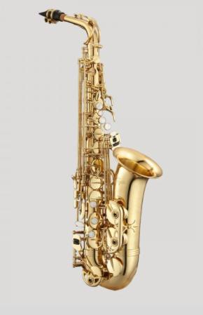 Antigua Vosi Eb Alto Saxophone Outfit
