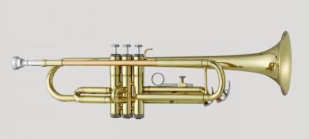 Antigua Vosi Bb Trumpet Outfit