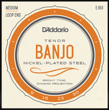 D'Addario EJ63 Medium Loop End Tenor Banjo Strings