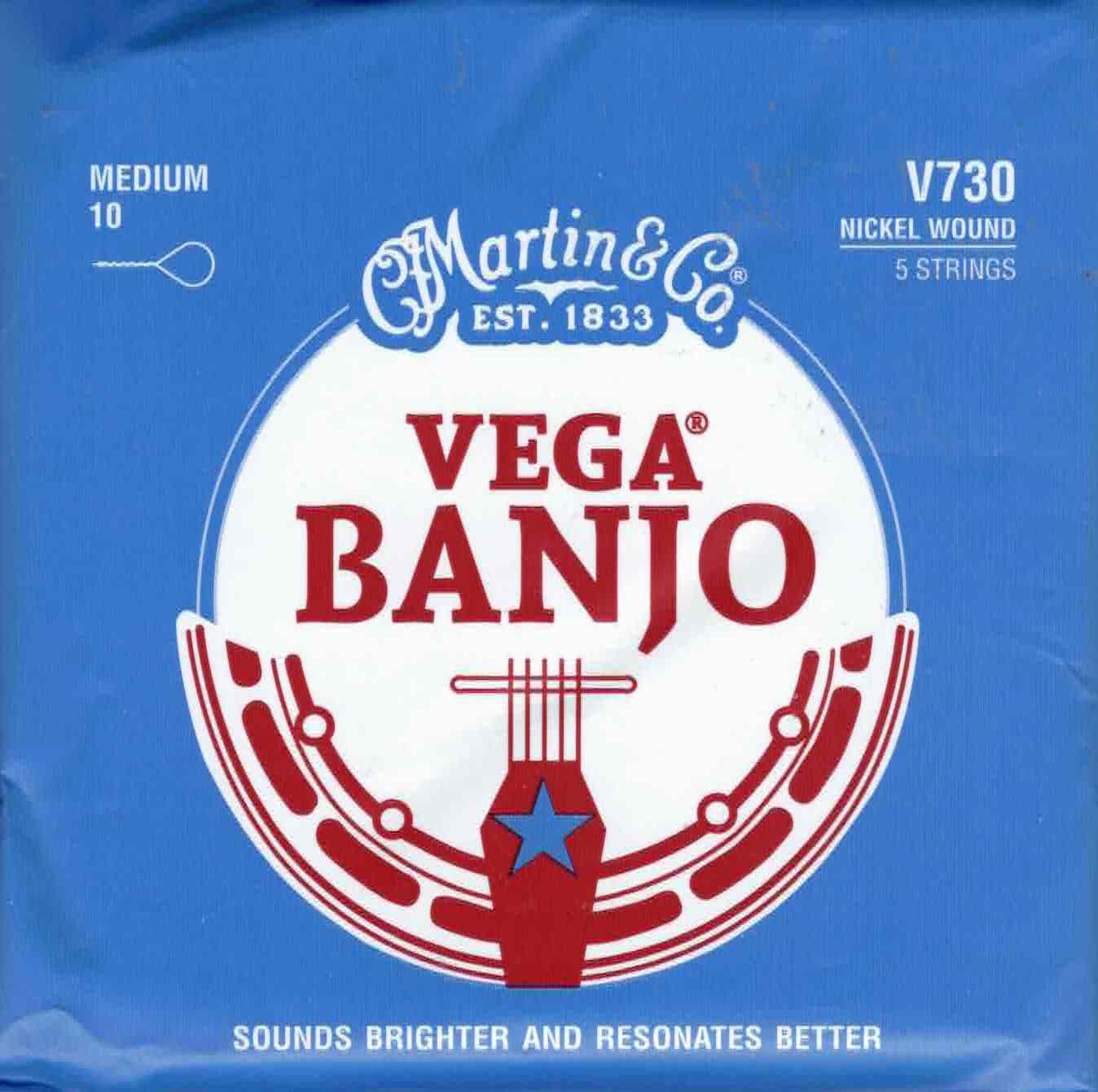 Martin V730 Vega 5-String Banjo Strings Loop End - Medium