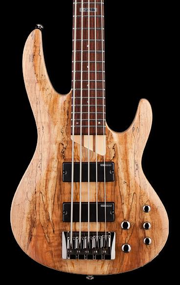 ESP/LTD B-205SM 5-String Bass Guitar - Natural Stain