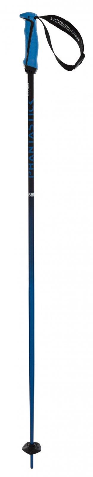 Volkl Phantastick 18mm Ski Poles
