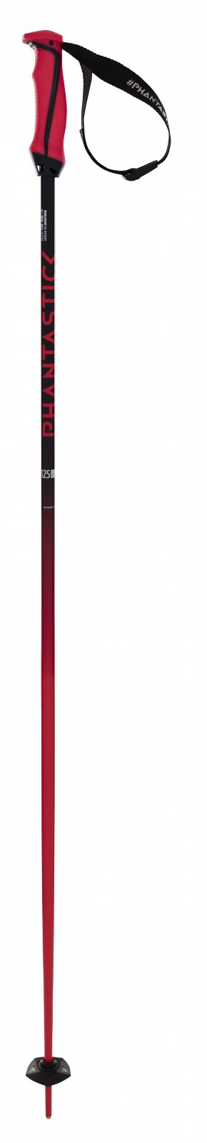 Volkl Phantastick Ski Poles 2021