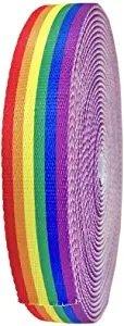 Rainbow Belting - 1.25 wide - Printed