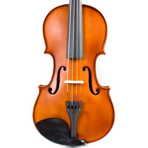 Palatino Instruments - VN-500 - Student Violin - Solid Wood Top