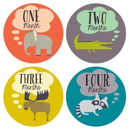 Little Animal Lover Baby Month Stickers