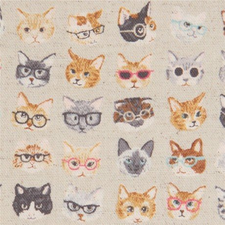 Cats Canvas