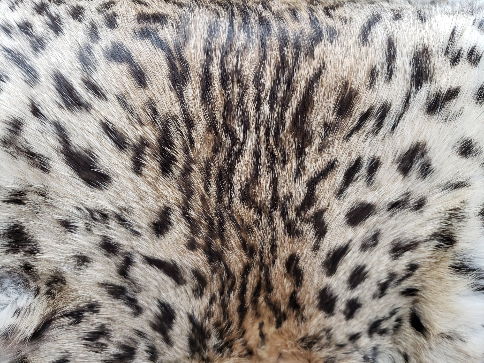 Rabbit Fur Pelt - Dyed Ocelot Print