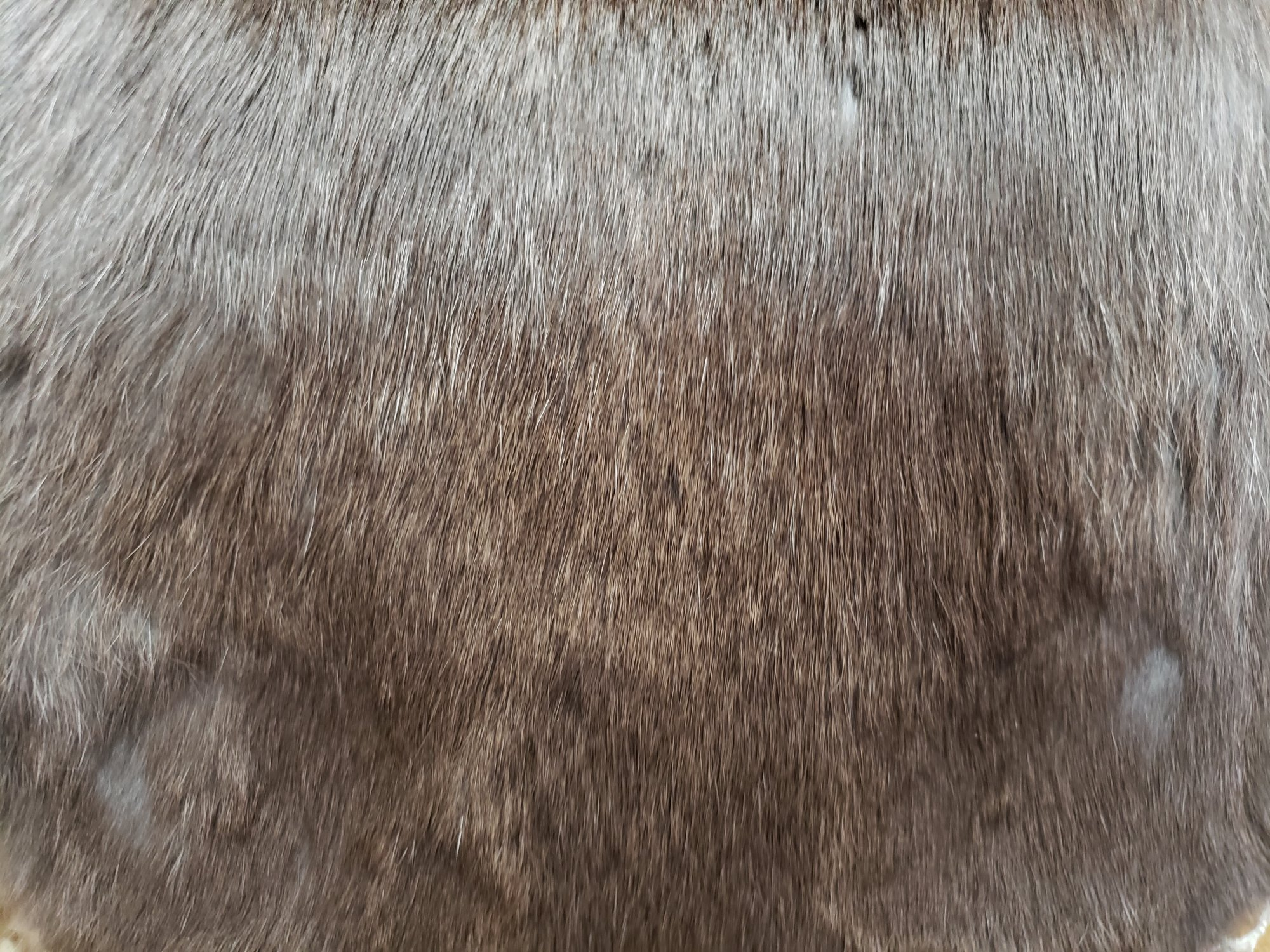 Rabbit Fur Pelt - Natural Charcoal