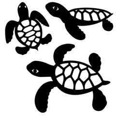 Turtle Laser Cuts  5 & 6.5 & 8 PK  Black