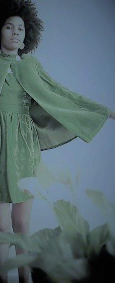 green velvet cape and dress